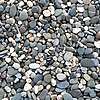 Grey pebbles on the beach as background | Stock Foto