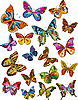 Vector clipart: Butterfly Set