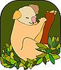 Vektor Cliparts: Koala-Bären