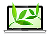 Laptop with leaves background