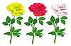 Векторный клипарт: реалистичные розы