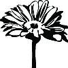 Vector clipart: daisy flower on stalk