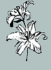 Vector clipart: two lilies