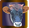 Vector clipart: cowof pet in frame