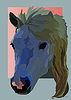 Vector clipart: pet horse