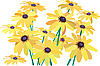 Yellow flowers | Stock Vector Graphics