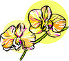 Vector clipart: two orchid with yellow middle