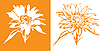 Sunflower design | Stock Vector Graphics