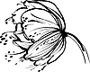 weißen Blütenknospen