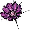 Vector clipart: bright of purple wild flower