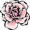 娇嫩的玫瑰花朵 | 向量插图