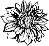 Vector clipart: black and white of chrysanthemum