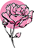 Vector clipart: decorative pink roses in bud on white background