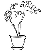 1 sketch room plant flower in pot