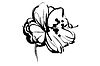Vector clipart: sketch of bud of blossoming out flower
