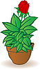Flowerpot with rose flower | Stock Illustration