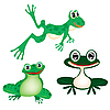 Green frogs on white | Stock Vector Graphics