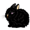 Vector clipart: nice black rabbit