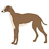 Vector clipart: greyhound dog