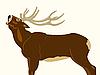 Vector clipart: Wild deer