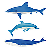 Vector clipart: Sea animals