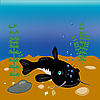 Vector clipart: Fish sheatfish on bottom