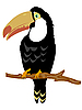 Vector clipart: Bird toucan on branch tree
