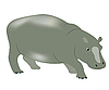 Vector clipart: hippopotamus