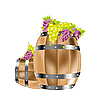 Vector clipart: Grapes in barrels