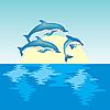 Векторный клипарт: Дельфины на восходе солнца