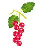 Векторный клипарт: Берри дерева щавель
