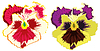 Vector clipart: flower pansy