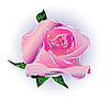 Vector clipart: Pink rose