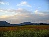 高加索景观和在白天秋季性质 | 免版税照片