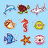Underwater sea life stickers | Stock Vector Graphics