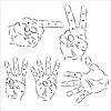 Vector clipart: Hands