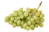 Bunch of grapes | Stock Foto