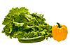 Fresh lettuce, cucumber and pepper   Stock Foto
