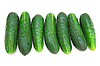 Cucumbers isolated on white | Stock Foto