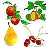 Vector clipart: set of fruits - pear, cherry and peach