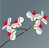 Vector clipart: twig of blossoming orchids