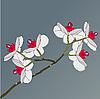 Векторный клипарт: ветка цветущей орхидеи