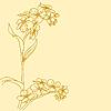 Vektor Cliparts: Schöne Blumen