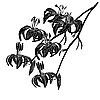 Vector clipart: lily flower on white
