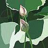 Векторный клипарт: Реалистичная восточных лотос - цветок