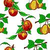 Векторный клипарт: Бесшовный фон с персиками и грушами.