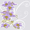 тендер ветка цветущей орхидеи на светлом фоне