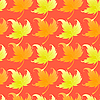 Vector clipart: Pattern with curling leaves of plant