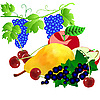 Vector clipart: set of fruits