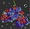 Векторный клипарт: цветочный фон с каплями воды